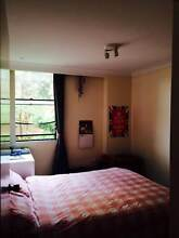 Room available in homely apartment in Elizabeth Bay Elizabeth Bay Inner Sydney Preview