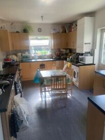 large en-suite double room in clean house all bills included