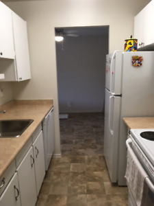 CLEAN, QUIET 1 BEDROOM APARTMENT ON GROUND LEVEL FOR RENT