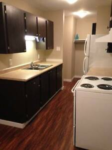 2 bedroom renovated apartment pet friendly