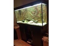 4ft Juwel Fish Tank plus cabinet, heaters, filters etc. (all offers considered)