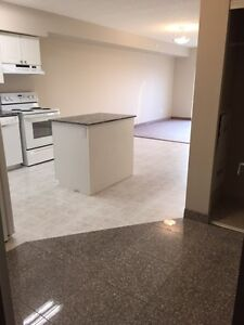SPACIOUS SUITES IN WATERLOO! READY NOW! Kitchener / Waterloo Kitchener Area image 11