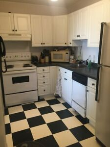 1 bedroom apartment beautiful light and 5 min to dal.