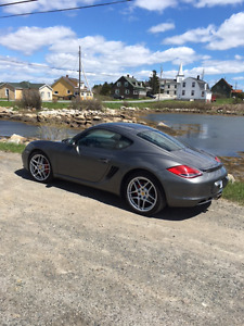 2009 Porsche Cayman S Coupe (2 door)