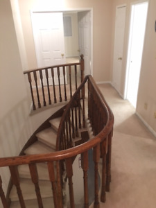 Fabulous Dundas location 4 bedrooms in single house for rent