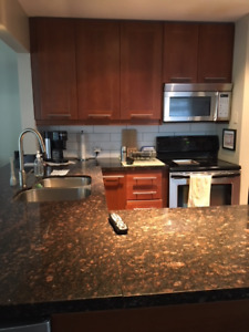 Granite Counter Top and Sink