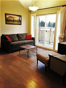 Deluxe New 2 BDRM loft,Furnished,West of Caroline,Alberta