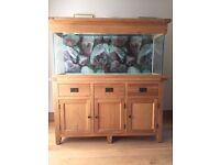Aqua Oak 150cm Aquarium with oak cabinet in very good condition