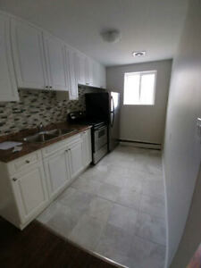 Newly Renovated 1 bedroom units - OPEN HOUSE - Saturday, Feb. 23