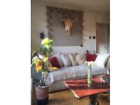 JUST REDUCED! - Fabulous one bedroom flat in Islington available now for short let, newly reduced