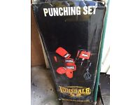 Lonsdale Punch Bag with hanging chain, gloves etc (£100 new)