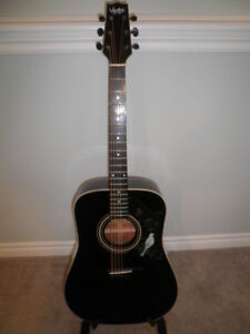Vester Stage Series Acoustic Guitar.