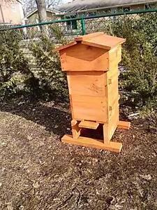 Warre Beehives London Ontario image 2