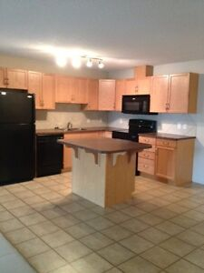 Great 2 Bedroom Apt/Condo In West Edmonton, Great Incentive !