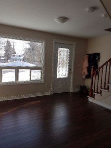 Newly Renovated Unique 1 Bedroom Two-Story Apartment