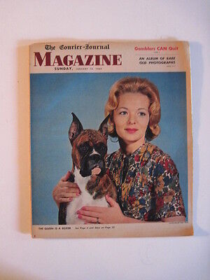 Louisville Courier Journal Magazine  1964  Westminster Dog Show Champion