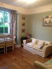 2 Bedroom furnished garden flat to rent in East Putney