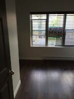 3 Bedroom FULLY RENOVATED apartment for rent in Wychwood Park /