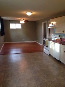 (all utilities included)large and bright 2 bedroom basement