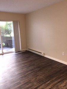 Apt/Condo for rent East Courtenay