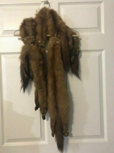 Vintage Fox Fur 4 Pelts Legs & Tails Collar Wrap by Carin Creation.. 1940