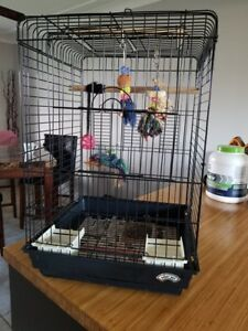 Black Bird Cage for Sale