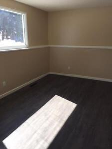 The Cozy Upgraded Two Bedroom Unit.