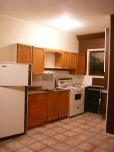 Enderby bachelor suite in Tri-Plex, April 1 SINGLE PERSON ONLY