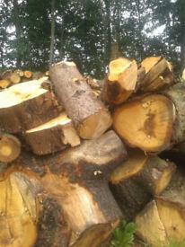 BULK FIREWOOD seasoned fire logs for all wood burning appliances.