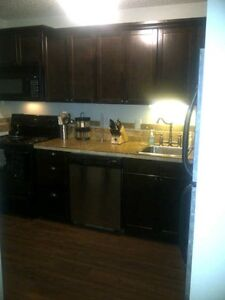 Pet Friendly 2 bdrm with amazing kitchen