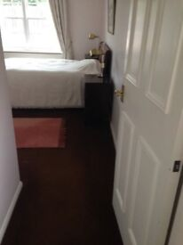 Spacious double room with en-suite bathroom available from February