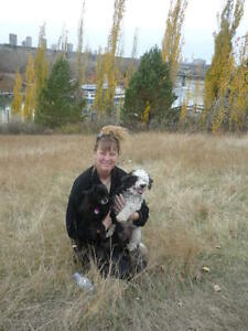PET SITTER, HOUSE SITTER, HOUSE SITTING, PET SITTING