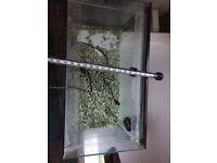Fish tank Clear Seal- bargain -