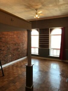 Renovated Bachelor Apartment Downtown Whitby