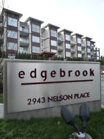 $85 /2br -1000ft2 Two Bed Two Full Bath Suite in Edgebrook (EDD)