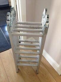 ABRU Multi-purpose folding/entending ladders
