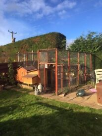 Chicken Houses Run & Enclosure