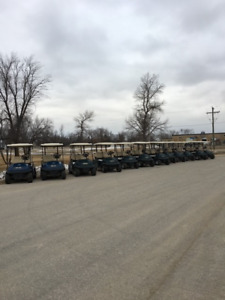 48V electric carts for sale
