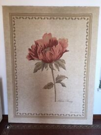 Very large stretched canvas print by Gloria Eriksen. Silver peony 5ft x 6ft 8in.