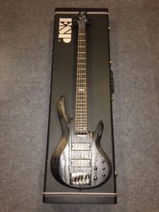 5 strings bass ESP LTD B-335 for sale with ESP hard case