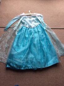 An original Disney Store Frozen Deluxe Elsa Costume Dress