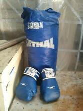 Punching bag and gloves Birmingham Gardens Newcastle Area Preview