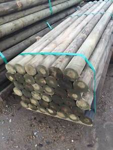 Treated Pine Fence Posts 100mm x 3.0m Penrose Bowral Area Preview