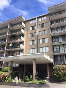 Richmond apartment in great location for rent.