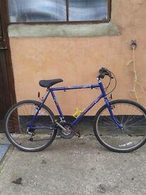 Raleigh Marauder adult bike