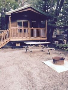 Pine 2 Bedroom Cabin Cottage in Muskoka +Pool +Park +Forest