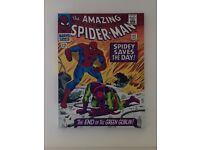 Spiderman/green goblin canvas print