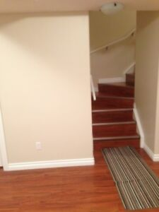 Furnished Basement for Rent in Parsons Creek
