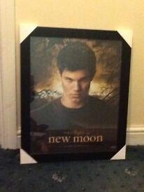 Twilight Jacob poster in frame