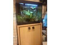 90 litre fluval tank wih cabinet